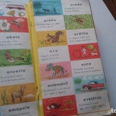 Libros de segunda mano: DICCIONARIO GRAFICO INANTIL EDIT. ROMA. Lote 66186606