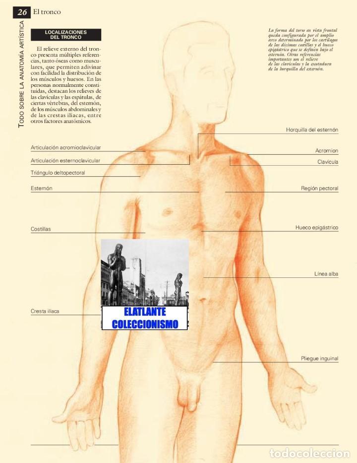 Asombroso Anatomía Para Artistas Aplicación Bosquejo - Imágenes de ...