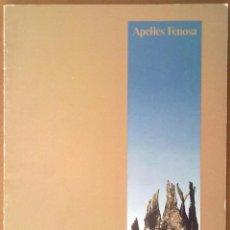 Livros em segunda mão: CATALOGO EXPOSICION APEL.LES FENOSA AJUNTAMENT DE BARCELONA 1983 ESCULTURA. Lote 68659441