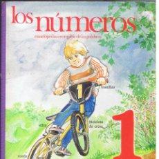 Libros de segunda mano: LOS NÚMEROS ENCICLOPEDIA IRROMPIBLE DE LA PALABRAS 1 EDI PLAZA JOVEN 12 PAG DE CARTÓN AÑO 1986 MD437. Lote 72900331