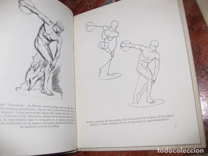 Libros de segunda mano: lote 3 libro dibujo anatomia 1969 . laminas dibujo nº6 . figura en el deporte 1966 emilio freixas - Foto 3 - 73698419