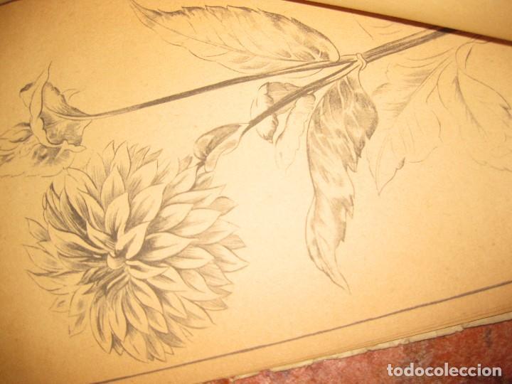 Libros de segunda mano: lote 3 libro dibujo anatomia 1969 . laminas dibujo nº6 . figura en el deporte 1966 emilio freixas - Foto 4 - 73698419
