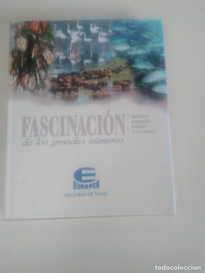 FASCINACION DE LOS GRANDES NUMEROS.MANADAS, BANDADA, BANCOS, ENJAMBRES-1998-1º ED-TAPA DURA (Libros de Segunda Mano - Ciencias, Manuales y Oficios - Otros)