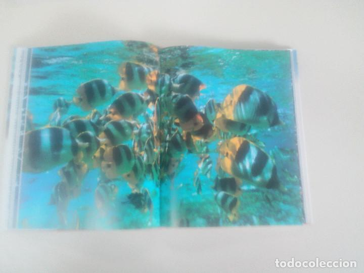 Libros de segunda mano: FASCINACION DE LOS GRANDES NUMEROS.MANADAS, BANDADA, BANCOS, ENJAMBRES-1998-1º ED-TAPA DURA - Foto 4 - 74000419