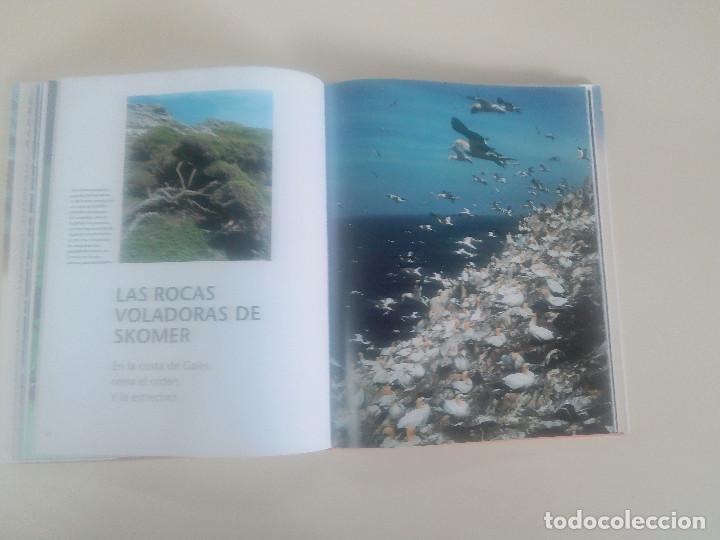 Libros de segunda mano: FASCINACION DE LOS GRANDES NUMEROS.MANADAS, BANDADA, BANCOS, ENJAMBRES-1998-1º ED-TAPA DURA - Foto 6 - 74000419