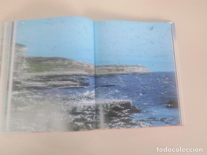 Libros de segunda mano: FASCINACION DE LOS GRANDES NUMEROS.MANADAS, BANDADA, BANCOS, ENJAMBRES-1998-1º ED-TAPA DURA - Foto 7 - 74000419