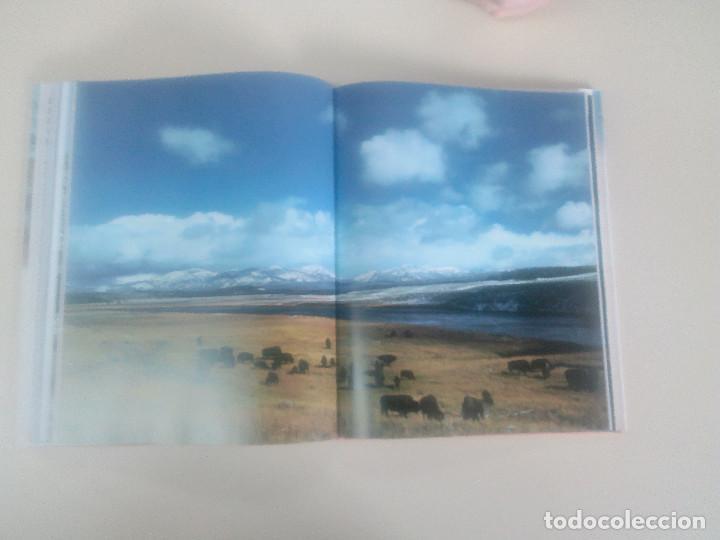 Libros de segunda mano: FASCINACION DE LOS GRANDES NUMEROS.MANADAS, BANDADA, BANCOS, ENJAMBRES-1998-1º ED-TAPA DURA - Foto 8 - 74000419