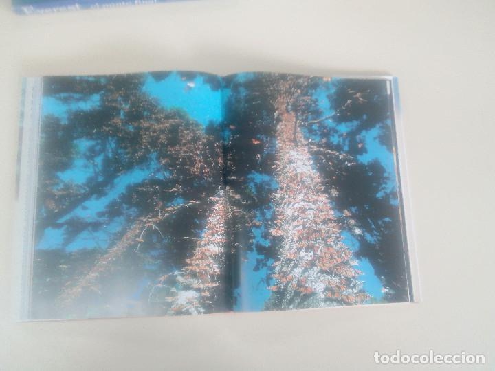 Libros de segunda mano: FASCINACION DE LOS GRANDES NUMEROS.MANADAS, BANDADA, BANCOS, ENJAMBRES-1998-1º ED-TAPA DURA - Foto 9 - 74000419