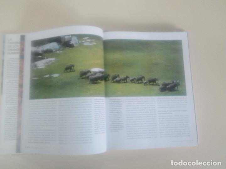 Libros de segunda mano: FASCINACION DE LOS GRANDES NUMEROS.MANADAS, BANDADA, BANCOS, ENJAMBRES-1998-1º ED-TAPA DURA - Foto 13 - 74000419