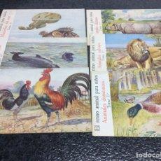 Second hand books - EL REINO ANIMAL PARA NIÑOS , LOTE DE 6 EJEMPLARES - ED. RAMON SOPENA - 74739023