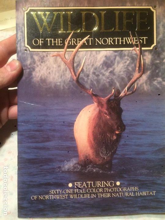ANTIGUO LIBRO DE RENOS WILDLIFE OF THE GREAT OF NORTHWEST AÑOS 90 (Libros de Segunda Mano - Ciencias, Manuales y Oficios - Otros)