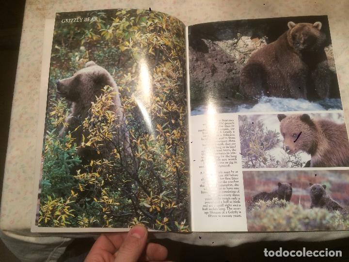 Libros de segunda mano: Antiguo libro de renos Wildlife of the Great of northwest años 90 - Foto 2 - 77593945