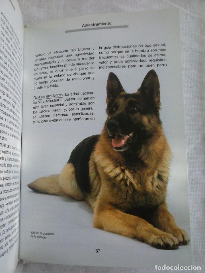 Libros de segunda mano: Libro Pastor Alemán. Paola Tucci - Grijalbo 1989. - Foto 6 - 80018153
