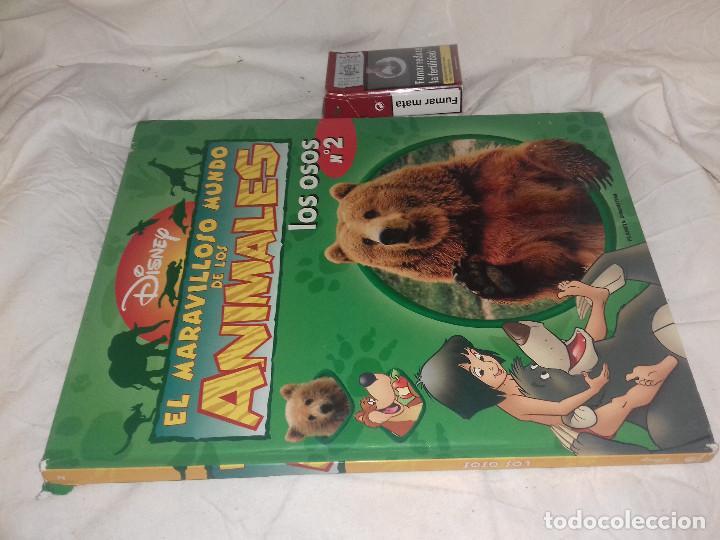 EL MARAVILLOSO MUNDO DE LOS ANIMALES 2: LOS OSOS. - DISNEY (Libros de Segunda Mano - Literatura Infantil y Juvenil - Otros)