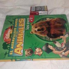 Libros de segunda mano: EL MARAVILLOSO MUNDO DE LOS ANIMALES 2: LOS OSOS. - DISNEY. Lote 81240216