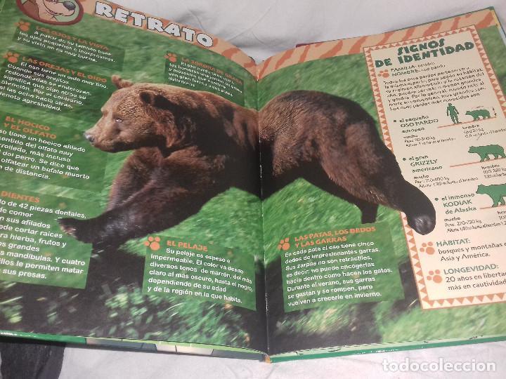 Libros de segunda mano: El Maravilloso mundo de los animales 2: Los Osos. - Disney - Foto 2 - 81240216