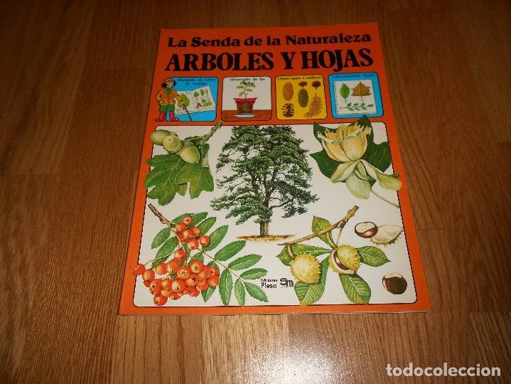 LA SENDA DE LA NATURALEZA ÁRBOLES Y HOJAS EDICIONES PLESA SM 1979 (Libros de Segunda Mano - Literatura Infantil y Juvenil - Otros)