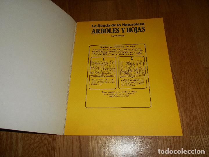 Libros de segunda mano: LA SENDA DE LA NATURALEZA ÁRBOLES Y HOJAS EDICIONES PLESA SM 1979 - Foto 2 - 81582148