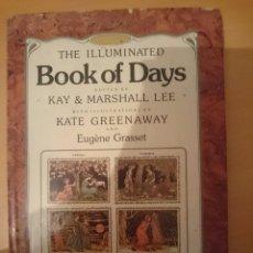 Libros de segunda mano: THE ILLUMINATED BOOK OF DAYS - LIBRO EN INGLES - VER FOTOS -REFMENOEN. Lote 82506548