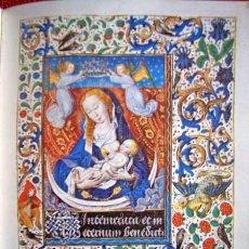 Libros de segunda mano: LIBRO DE HORAS DE MARÍA DE BORGOÑA + ESTUDIO EN CASTELLANO. Lote 96814103
