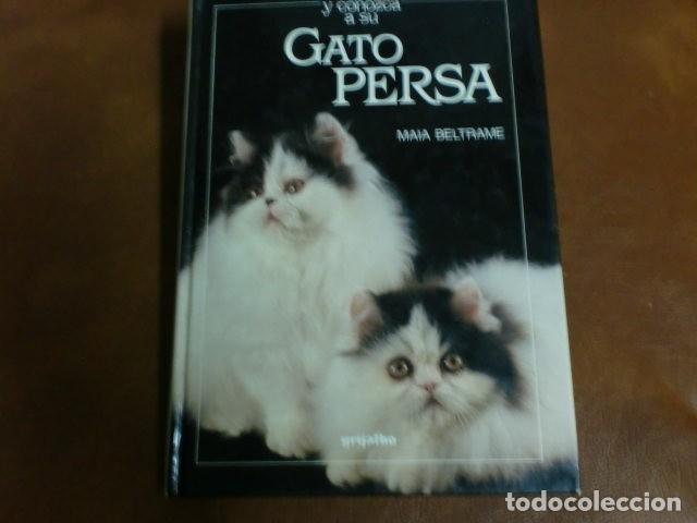 LIBRO: GATO PERSA DE MAIA BELTRAME.- ED- GRIJALBO (Libros de Segunda Mano - Ciencias, Manuales y Oficios - Otros)
