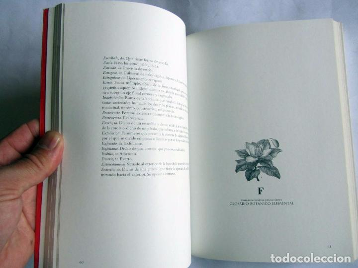Libros de segunda mano: Diccionario botanico para cocineros. Andoni Luis Aduriz y Francois-Luc Gauthier. - Foto 6 - 89661080
