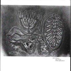 Libros de segunda mano: FITA = PLÒTERS - ESCULTURES-DIBUIXOS. Lote 90532300