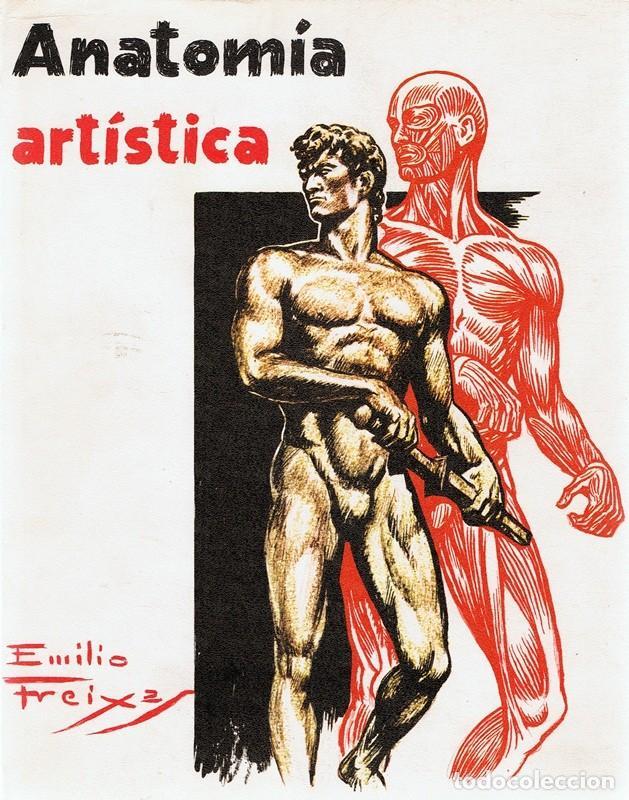 ANATOMÍA ARTÍSTICA EMILIO FREIXAS (Libros de Segunda Mano - Bellas artes, ocio y coleccionismo - Otros)