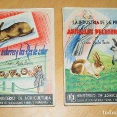 Libros de segunda mano: EL CASTORREX Y LOS REX DE COLOR Y ANIMALES PELETEROS, LA INDUSTRIA DE LA PIEL.. Lote 94305806