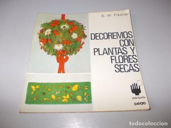 Decoremos Con Plantas Y Flores Secas Ew Fisc Comprar En