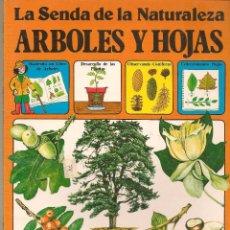 Libros de segunda mano: LA SENDA DE LA NATURALEZA. ÁRBOLES Y HOJAS. EDICIONES PLESA/ S M. (B/58). Lote 95740907