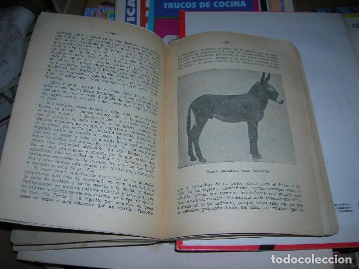 Libros de segunda mano: Almanaque agricola Ceres. Año 1953. - Foto 6 - 95806787
