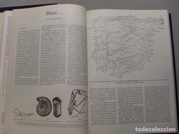 Libros de segunda mano: INVESTIGACIÓN Y CIENCIA / Año 1983 en dos Tomos - Foto 4 - 96808359