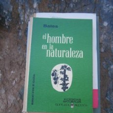 Libros de segunda mano: LIBRO EL HOMBRE EN LA NATURALEZA BATES 4 CIENCIAS NATURALES 1ª ED. ESPAÑOL 1965 MEXICO L-5798-530. Lote 97799019