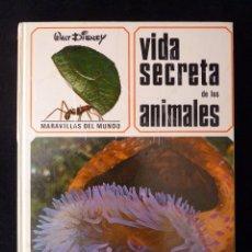 Libros de segunda mano: WALT DISNEY. VIDA SECRETA DE LOS ANIMALES. ED. GAISA, 1968. PERFECTO. Lote 99722939