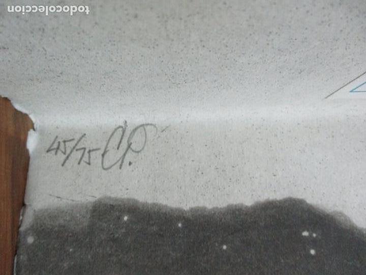 Libros de segunda mano: JARDIN COMPARTIDO.VELA, María y PAZOS, Carlos.1989. ILUSTR.GRABADO-COLLAGE. ED. NUMERADA Y FIRMADA. - Foto 9 - 99744715