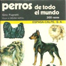 Libros de segunda mano: GINO PUGNETTI-PERROS DE TODO EL MUNDO.MANUALES ESPASA.1979.. Lote 102243939