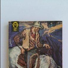 Libros de segunda mano: EL AZOTE DE TEJAS. DEAN OWEN. 1962. Lote 102669615