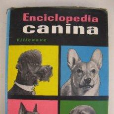 Libros de segunda mano: ENCICLOPEDIA CANINA - G. M. VILLENAVE - EDITORIAL NOGUER - AÑO 1965.. Lote 102948511