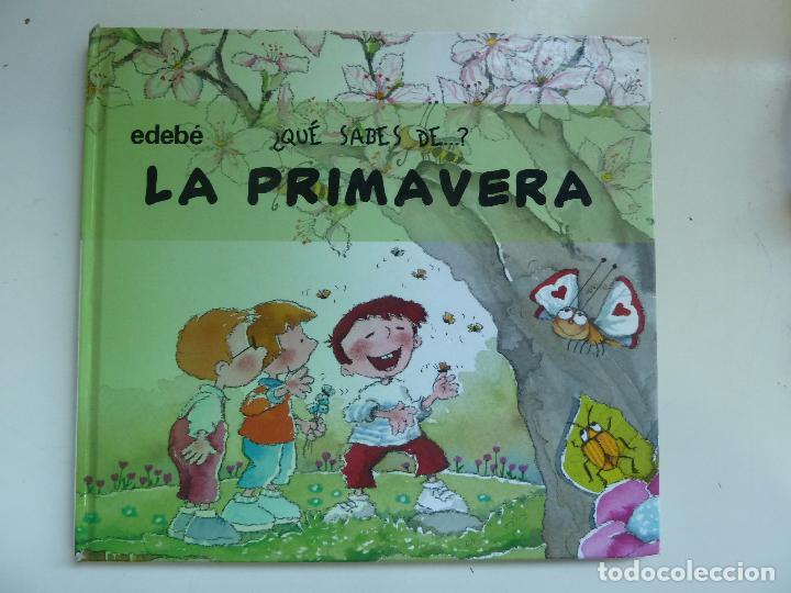 QUE SABES DE LA PRIMAVERA (Libros de Segunda Mano - Literatura Infantil y Juvenil - Otros)