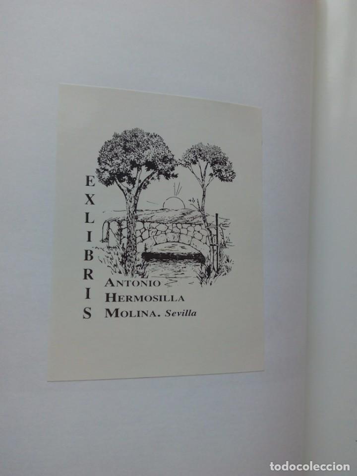 Libros de segunda mano: LA REUMATOLOGIA EN EL ARTE 35 CMS 1100 GRS 106 PGS MUY ILUSTRADO - Foto 4 - 104356227