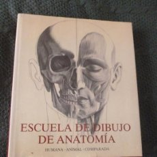 Libros de segunda mano - Escuela de dibujo de anatomia. humana/animal/comparada. Szunyoghy, A./Feher, G. Ed.KONEMANN - 104520611