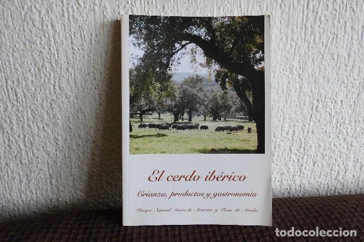 El cerdo iberico. Crianza, productos y gastronomia. Parque natural sierra Aracena y picos de Aroche, usado segunda mano