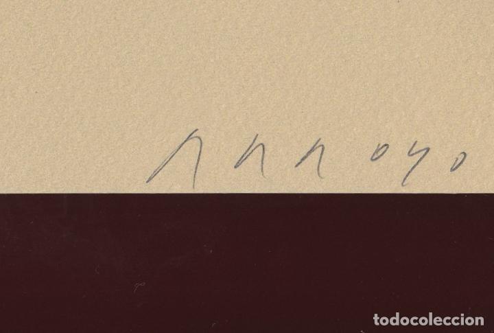 Libros de segunda mano: ORAISONS FUNÈBRES ANDRÉ MALRAUX LIBRO ARTISTA NUMERADO FIRMADO A MANO LITOGRAFÍA 338/495 ARROYO - Foto 7 - 106593163