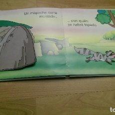 Second hand books - CONJUNTO DE CUATRO CUENTOS ANIMADOS - 107988575