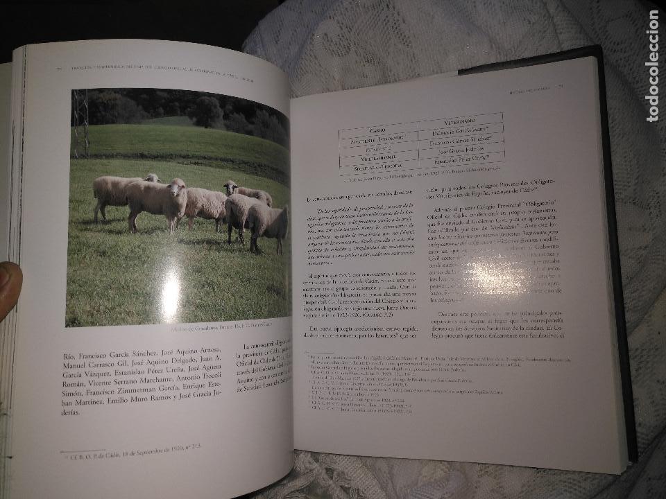 Libros de segunda mano: TRADICIÓN Y MODERNIDAD. HISTORIA COLEGIO OFICIAL DE VETERINARIOS CÁDIZ caballos cerdos burros perro - Foto 5 - 108432063