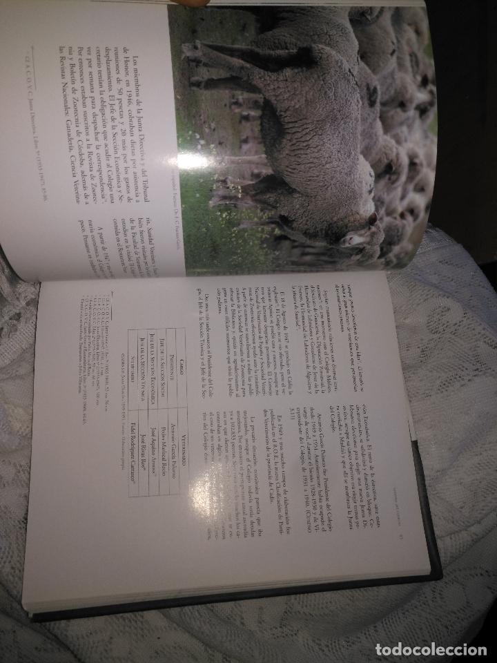 Libros de segunda mano: TRADICIÓN Y MODERNIDAD. HISTORIA COLEGIO OFICIAL DE VETERINARIOS CÁDIZ caballos cerdos burros perro - Foto 9 - 108432063