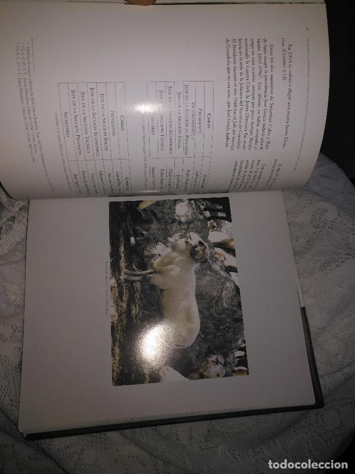 Libros de segunda mano: TRADICIÓN Y MODERNIDAD. HISTORIA COLEGIO OFICIAL DE VETERINARIOS CÁDIZ caballos cerdos burros perro - Foto 10 - 108432063