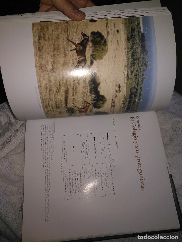Libros de segunda mano: TRADICIÓN Y MODERNIDAD. HISTORIA COLEGIO OFICIAL DE VETERINARIOS CÁDIZ caballos cerdos burros perro - Foto 12 - 108432063