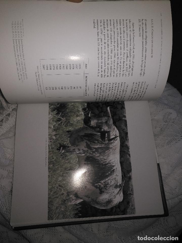 Libros de segunda mano: TRADICIÓN Y MODERNIDAD. HISTORIA COLEGIO OFICIAL DE VETERINARIOS CÁDIZ caballos cerdos burros perro - Foto 13 - 108432063